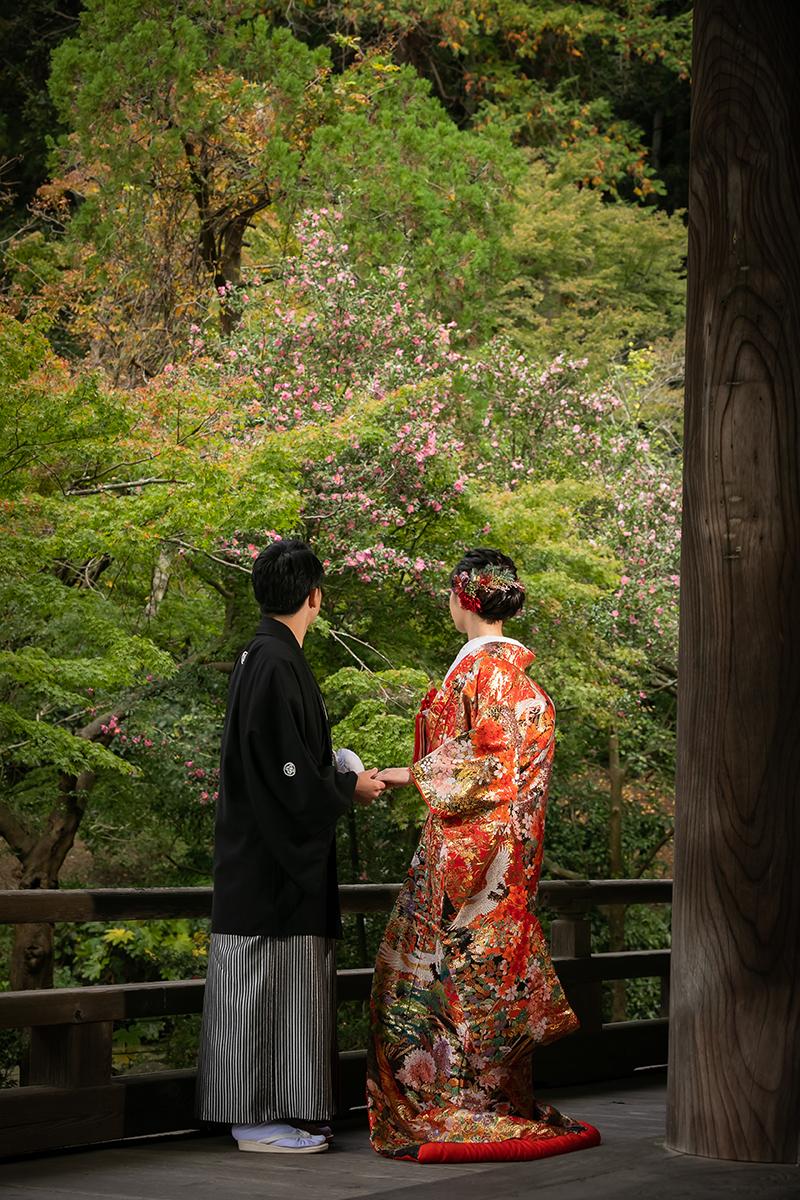 2020.11.22妙本寺