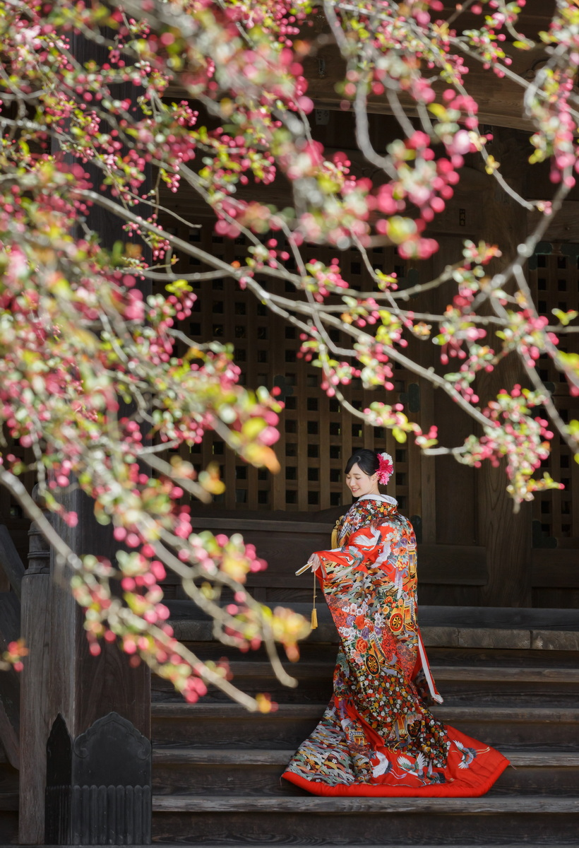 鎌倉 和装 前撮り 妙本寺 ご新婦 フォトウェディング