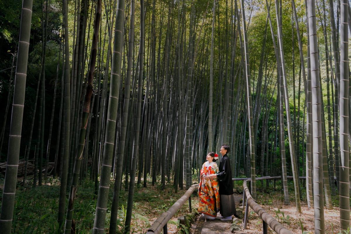 鎌倉 和装 前撮り 竹林のお寺 色打掛 新郎新婦 2019年5月11日撮影